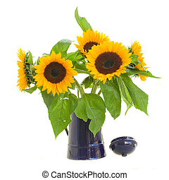 sunflowers in flower pot - beautiful sunflowers bouquet in...