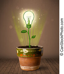 Lightbulb plant coming out of flowerpot - Glowing lightbulb...