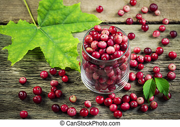 Cranberries - Freshly harvested organic red Cranberries in...
