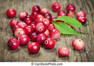 Cranberries - Freshly harvested organic red Cranberries on...