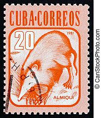 Postage stamp Cuba 1981 Almiqui, Cuban Solenodon, Mammal -...