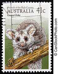 Postage stamp Australia 1990 Greater Glider, Marsupial...