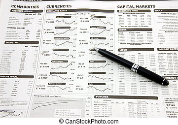 Exchange rates, capital markets & pen