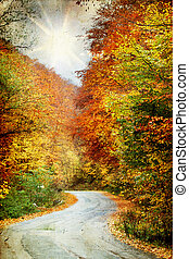 Curving road in autumn forest - Vintage photo of curving...