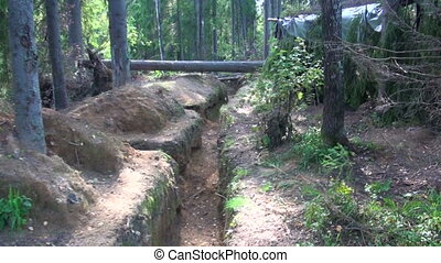 Military forces, trench in the forest