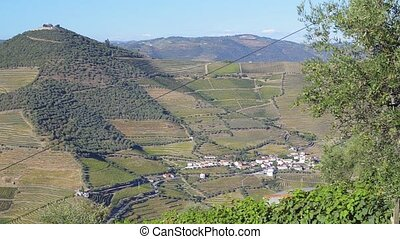 Terraced vineyards in Douro Valley - Pan move from right to...