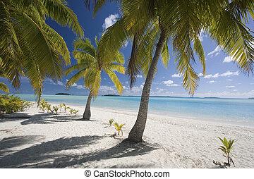 Aitutaki Lagoon - Cook Islands - South Pacific - Aitutaki...