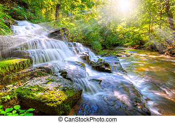 Forest stream and waterfall - The Shaker Fulling Mill at...