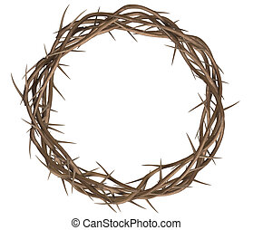 Crown Of Thorns Top - A top view of branches of thorns woven...