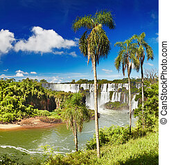 Iguassu Falls, view from Argentinian side - Iguassu Falls,...