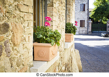 Old house with flowers in italy, europe