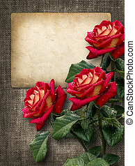 Card for invitation or congratulation with red roses in...