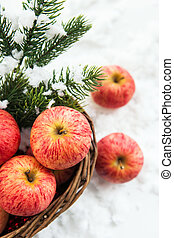 Christmas composition with apples - Christmas composition...