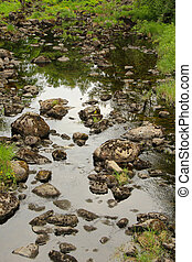 Riverbed with still water and mossy stones