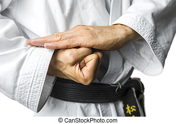 Karate concept - Closeup of karate hands. Over white...