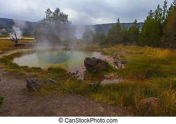 yellowstone national park geyser