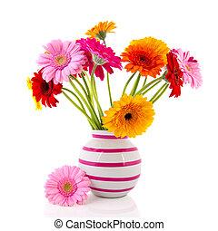Gerber flowers in striped vase - Colorful Gerber flowers in...