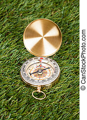 Compass On Green Grass