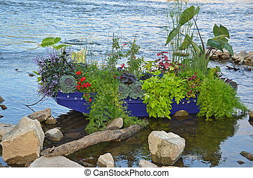 plants in blue row boat - Plants and flowers growing in a...