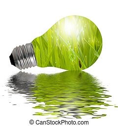 Eco Lamp reflected in water - Eco lamp with grass and water...