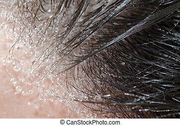 Wet hair - Close up on wet hair with water drops
