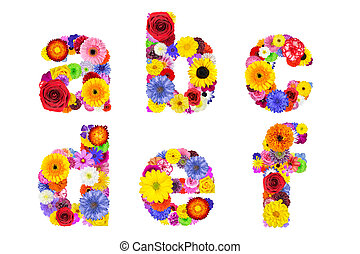 Floral Alphabet Isolated on White - Letters A, B, C, D, E, F...