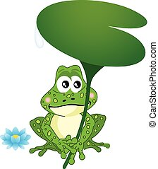 Frog Holding Water Lily Leaf