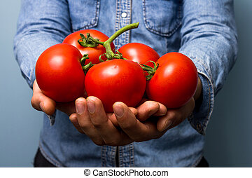 Man holding tomatoes on the vine