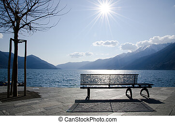 Bench and tree on the lake front in backlight - Bench and...