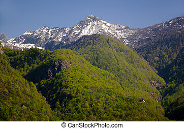 Green mountains and snow-capped alps with a church