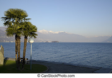 Lake with snow-capped mountains and palm trees