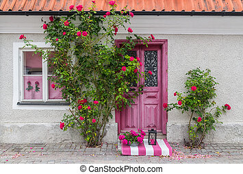 Roses decorating the house entrance in the town of Visby...