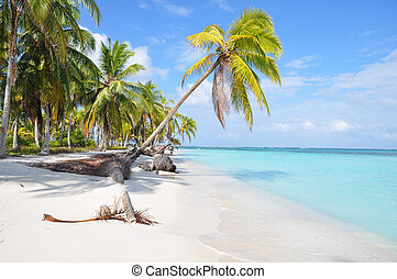 The most beautiful lonely beach in San Blas island, Panama....