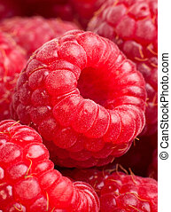 Ripe rasberry background Close up macro shot of raspberries...