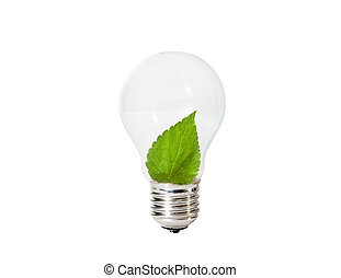 Light Bulb with green leaf inside