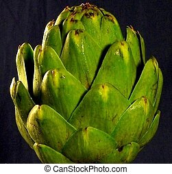 Green Artichoke - A close up of an artichoke