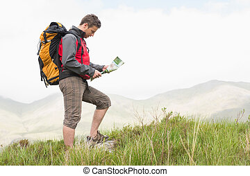 Handsome hiker with backpack hiking uphill reading a map in...