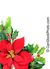 Christmas decor - Twig of holly berry and poinsettia flower,...
