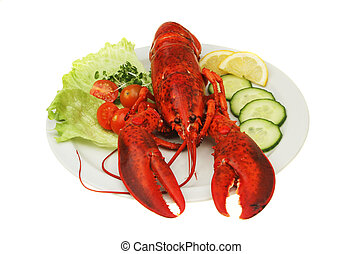Lobster on plate - Lobster with salad garnish on a white...