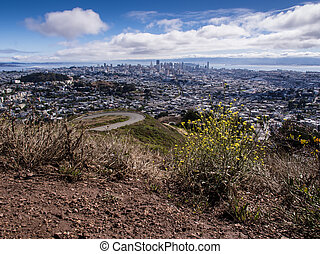 San Francisco Skyline from Twin Peaks