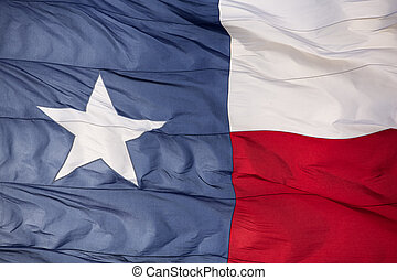 Rippled Flag of the State of Texas