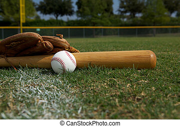 Baseball Bat and Glove on the Field - Baseball Bat and Glove...