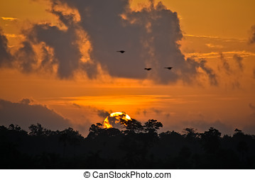 Caribbean Sunrise - sunrise over Honey Camp Lagoon ,Belize...