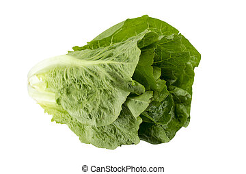 Romain Lettuce on a white background, (with clipping work...
