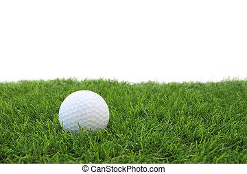 White golf ball on green grass field.