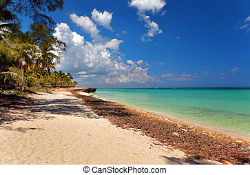 beautiful view of the Atlantic Ocean, Varadero, Cuba