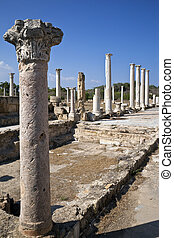 Salamis - Turkish Cyprus - Part of the Gymnasium Colonnade...