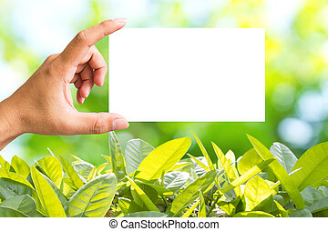 Hand Showing Blank Paper Note
