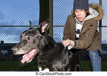 vicieux, chien, saut, loin, sien, propriétaire