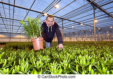 Showing a plant
